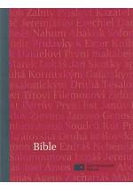 Bible ČEP malá karmín